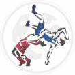 Keresztszemes mintàs- magyar versenymez-kék