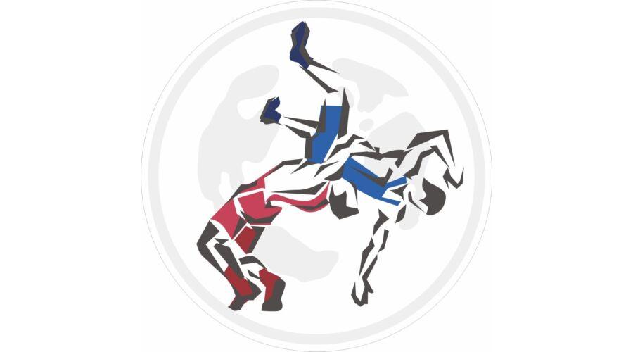 30b8e5535d95 ADIDAS hullámos varrású mez-L-kék - Adidas - Birkózómez